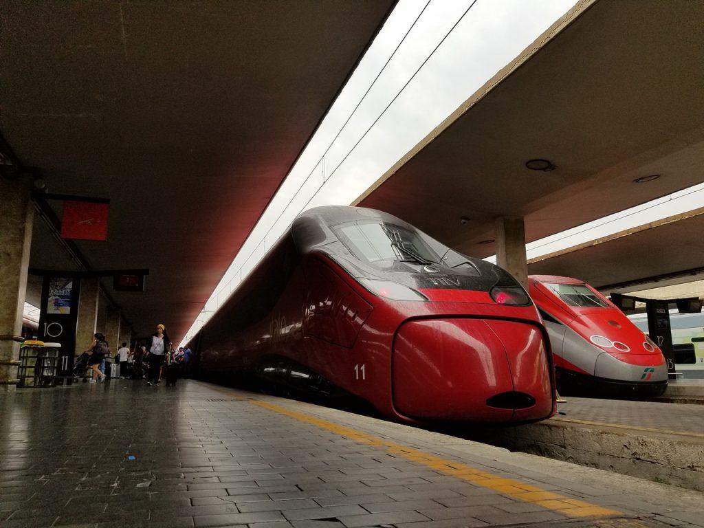 Viaggiare in treno con il cane su Italo