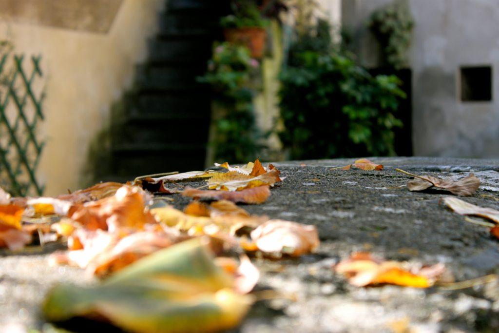 Dove vedere il foliage in Italia: il Lazio