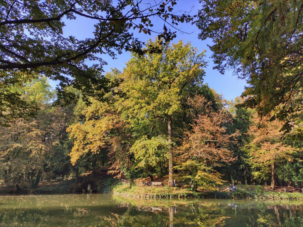 Il foliage in Lombardia al Parco di Monza