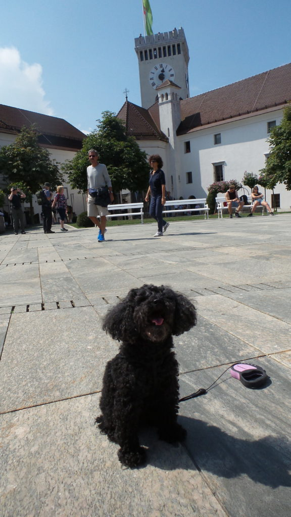 Il Castello di Lubiana con il cane