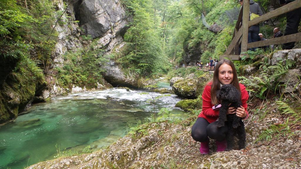 Cosa vedere in Slovenia con il cane: la Gola di Vintgar