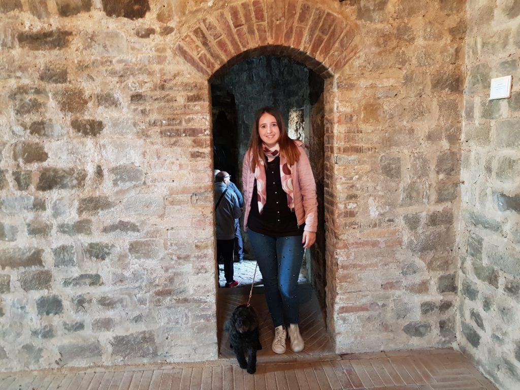 Le mura della fortezza di Montalcino