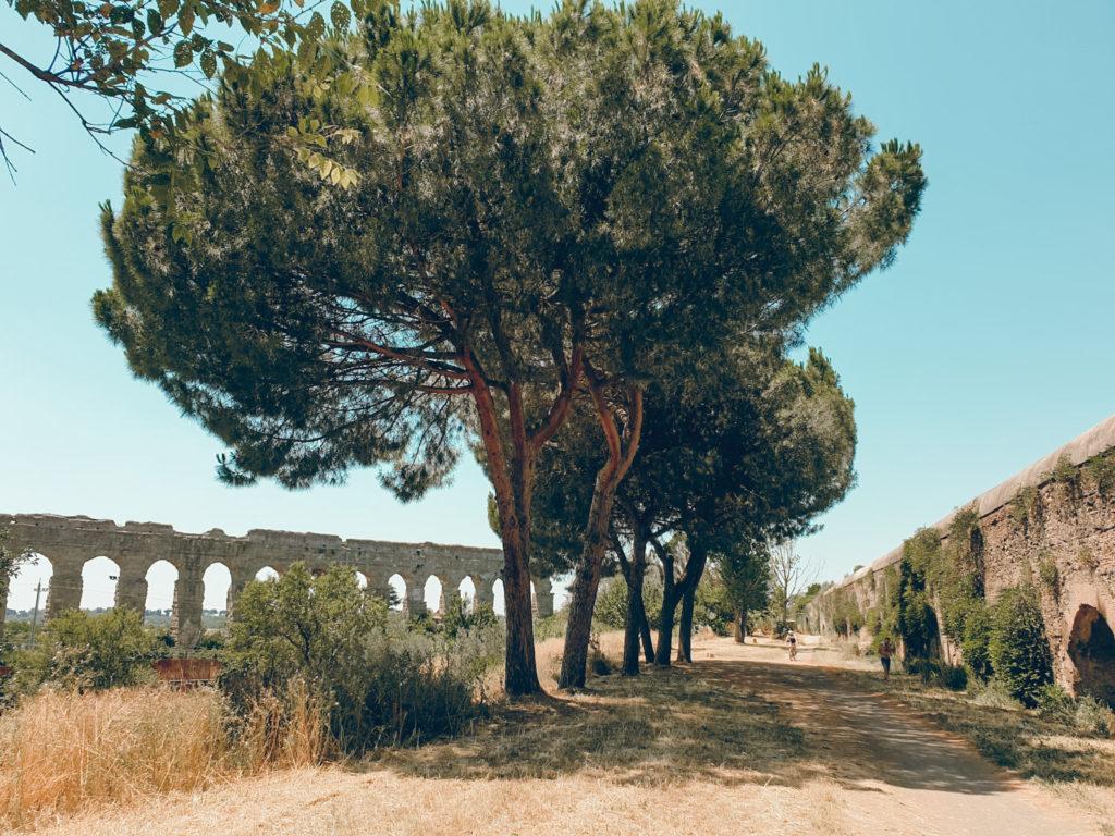 vacanze estive in Italia: Parco degli Acquedotti a Roma