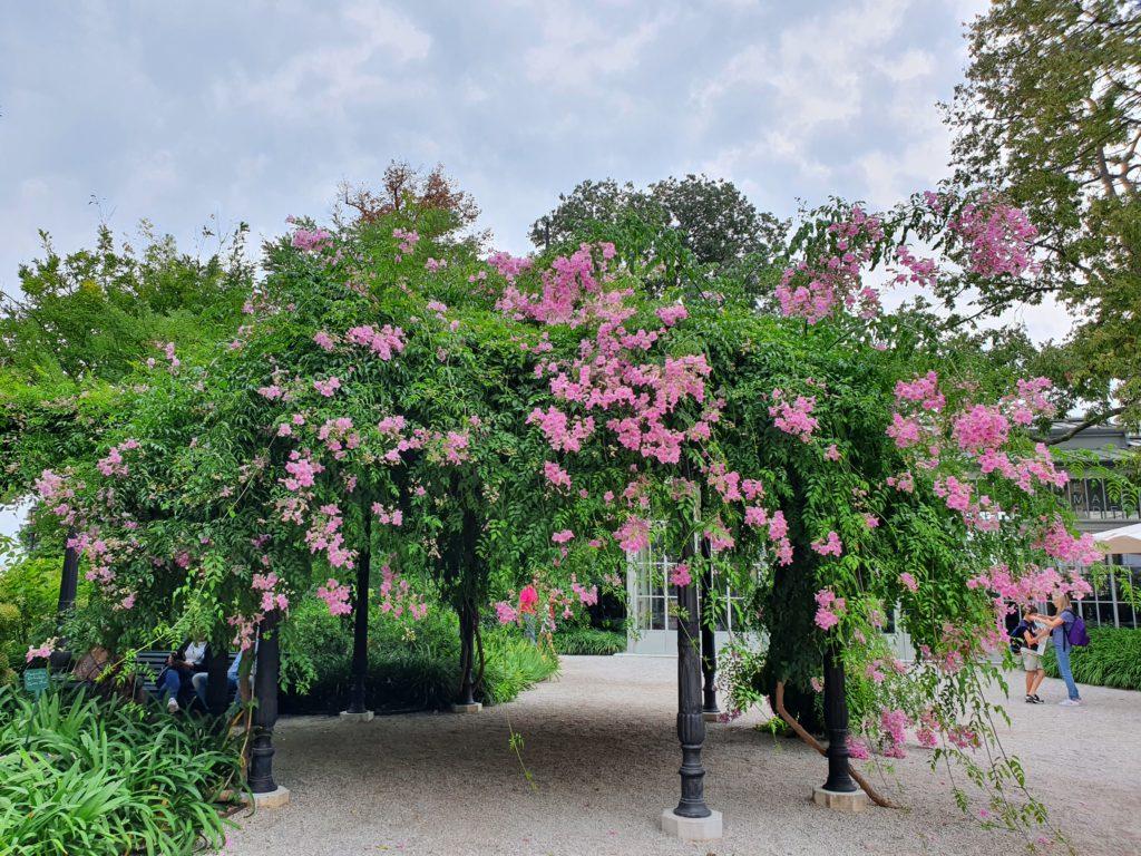 Venezia con il cane: i giardini reali